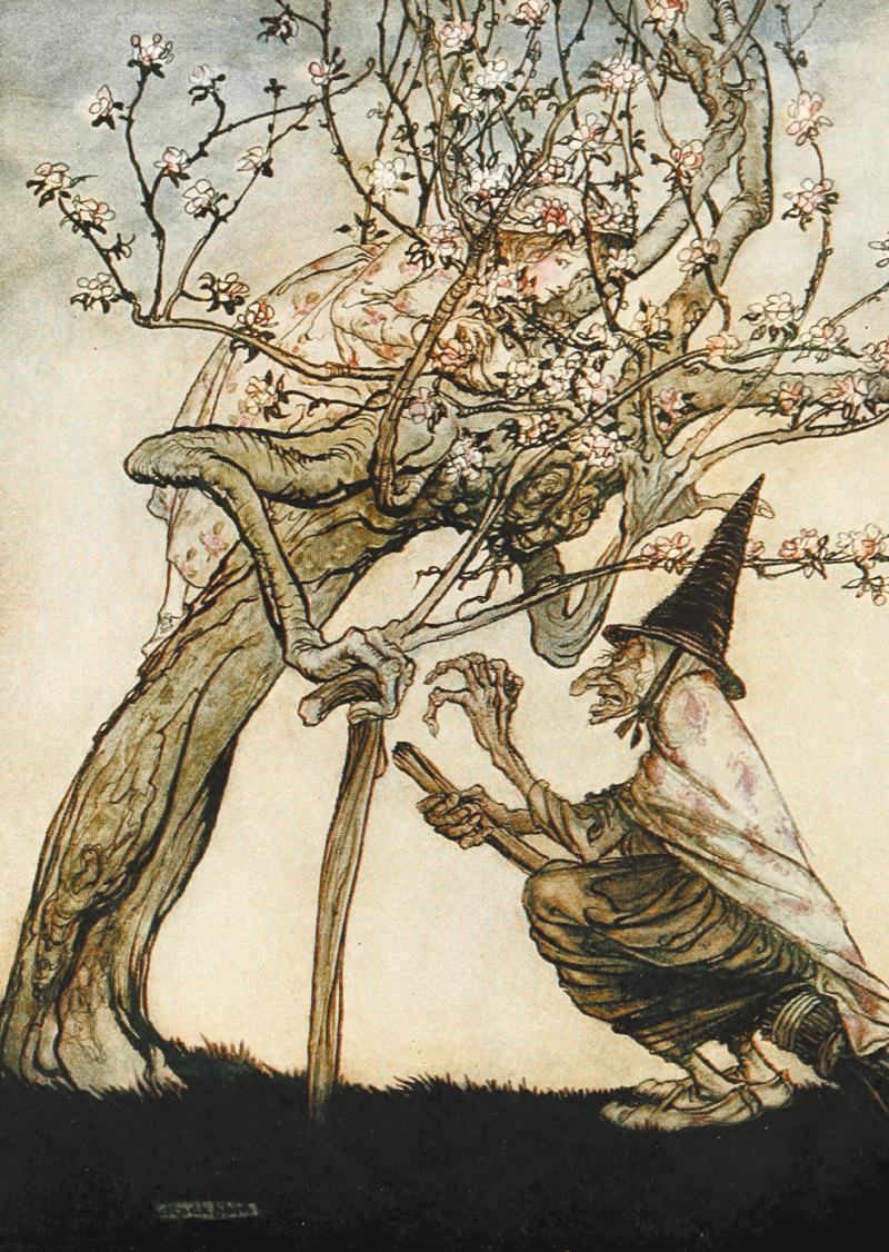 The Two Sisters, Tree, Arthur Rackham
