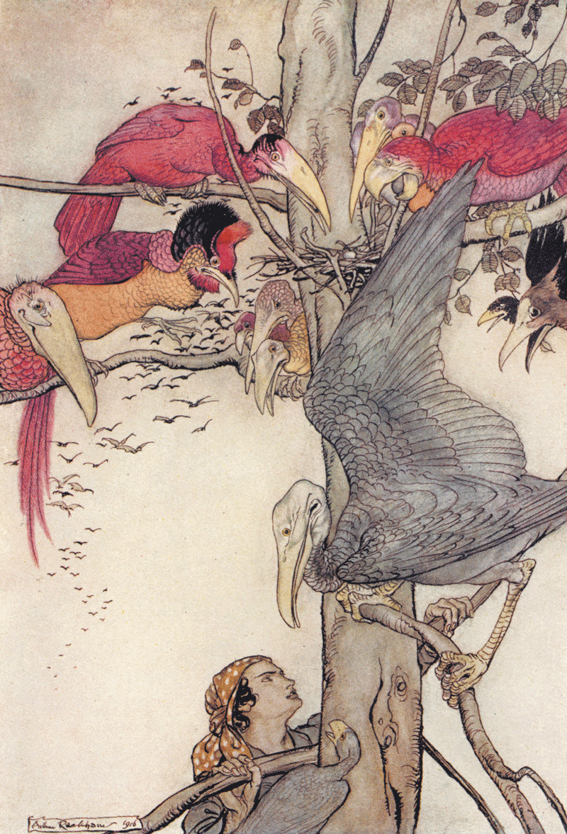 What Came of Picking Flowers by Arthur Rackham