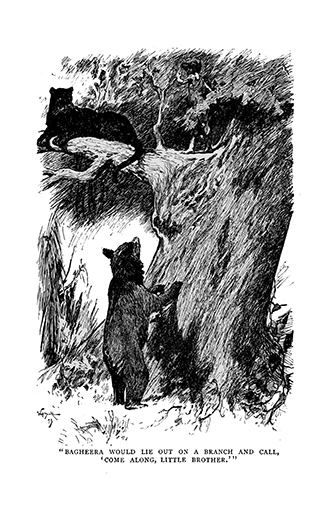 The Jungle Book - Illustrated by John Lockwood Kipling