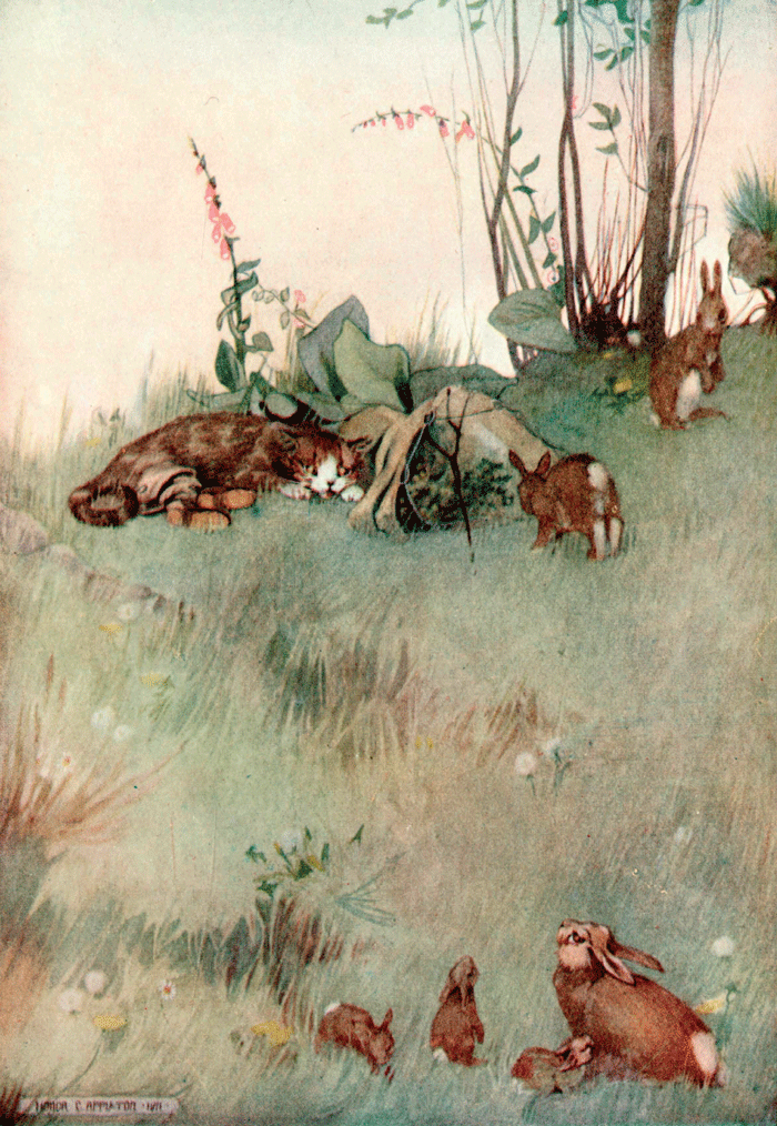 'Puss in Boots' Perrault's Fairy Tales – Illustrated by Honor C. Appleton