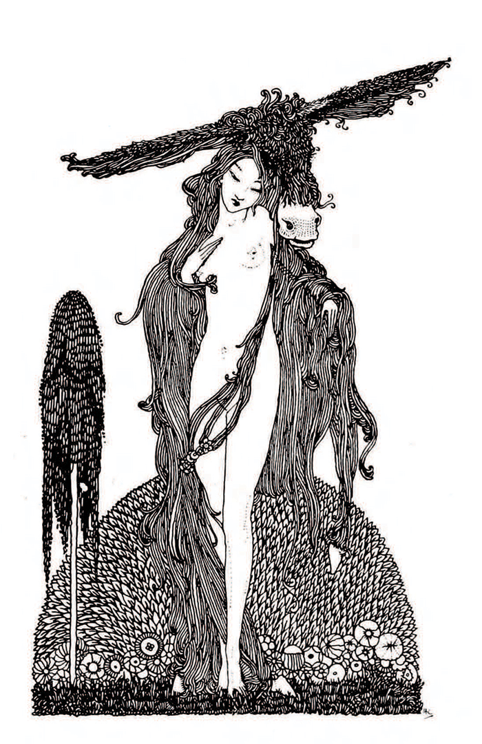 Donkey-Skin - Harry Clarke