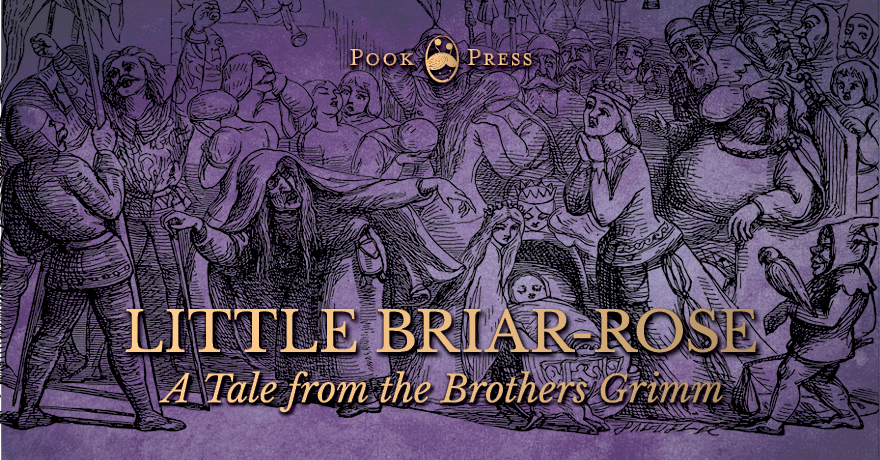 Little Briar-Rose – A Sleeping Beauty Story from the Brothers Grimm