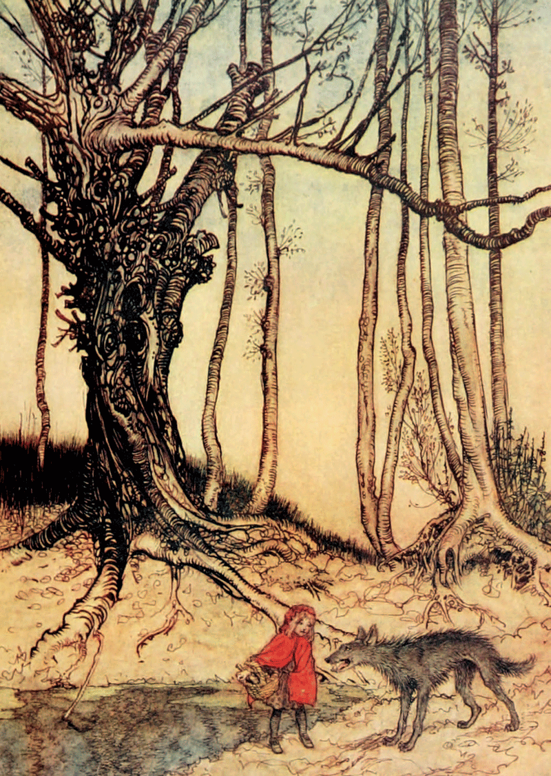 Tree, Arthur Rackham, Little Red Riding Hood