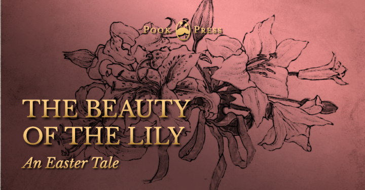 The Beauty of the Lily