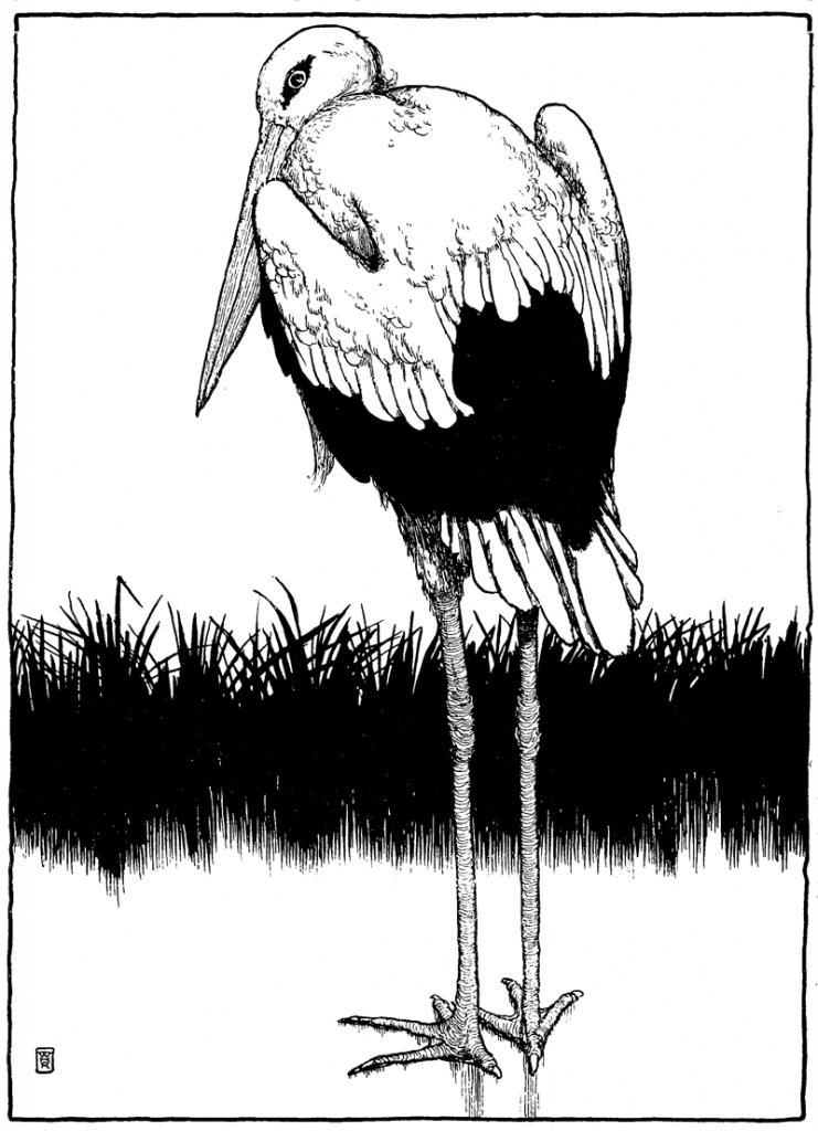 The Storks - Illustration by W. Heath Robinson