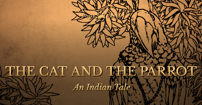 The Cat and The Parrot – An Indian Tale